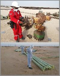Maqshan Oil & Gas Services (SAOC)